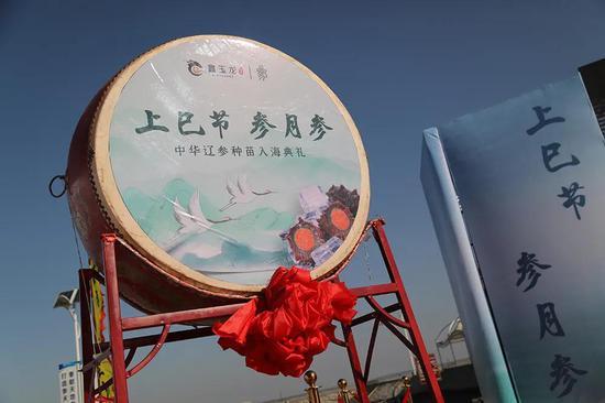上巳节 参月参 中华辽参种苗入海典礼在鑫玉龙平岛隆重举行