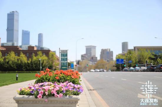 大连市2021年第一季鲜花摆放工作已顺利完成