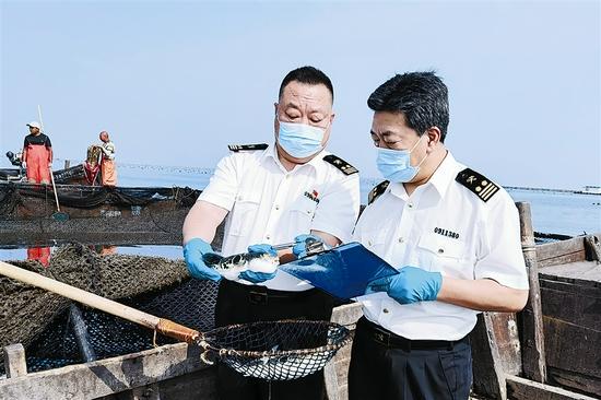 海关关员现场查验进出口活鱼。刘慧媛 摄