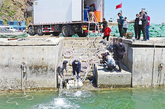 金普新区开启海上增殖放流活动