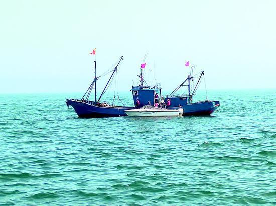 执法人员驾驶快艇登上渔船检查。