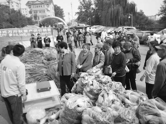 10月15日起,市民可以购买到秋菜了。