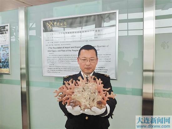 查获的红珊瑚制品已被暂扣,待进一步处理。