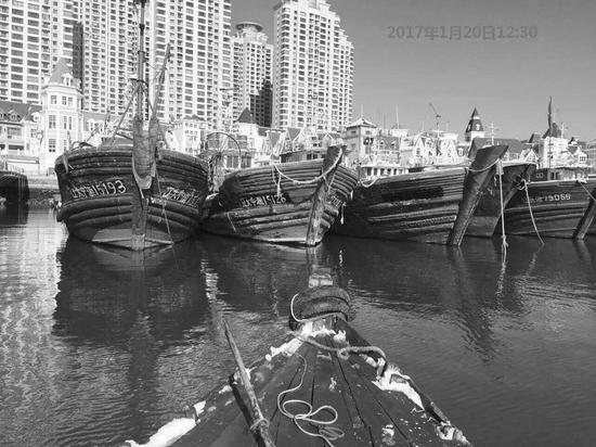 """市海洋与渔业局网站公布的图片显示,""""辽大中渔15126""""渔船1月20日还停在老虎滩。"""