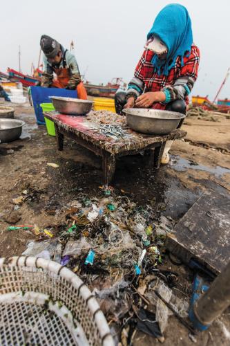 岸上的工人分拣海货,挑出的海洋垃圾(画圈处)。