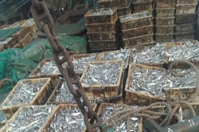 威廉希尔中文网附近海域现非法捕捞活动