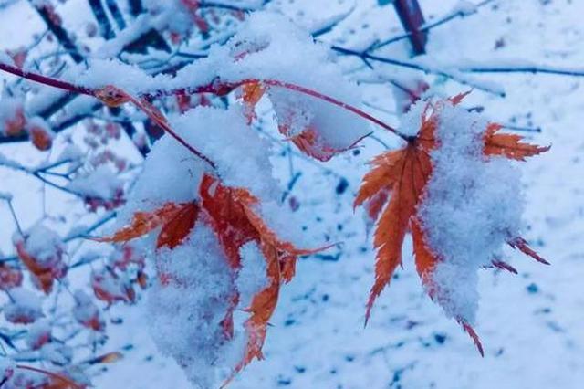 """辽宁人注意!今日最低-13℃ 这个周末被""""冻住""""了"""