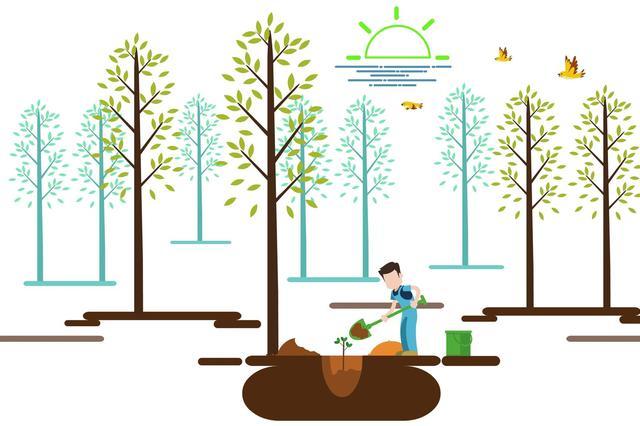 风景园林处全面开展春季绿化