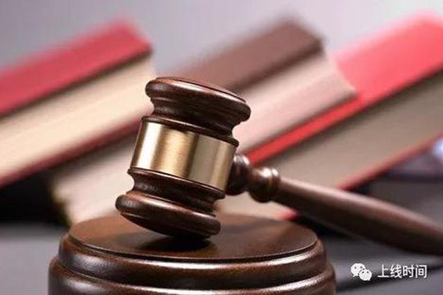李文星求职被骗进传销死亡案 传销组织成员被公诉