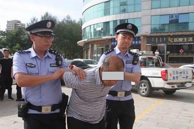 公安机关抓获犯罪嫌疑人李某某