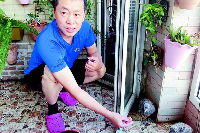 护鸟志愿者提醒:路边的野蛋你不要捡