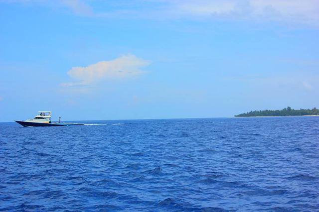 星海发生海上交通肇事逃逸案