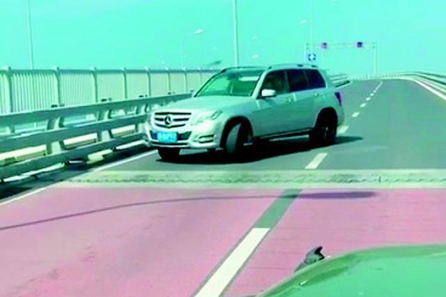女司机星海湾跨海大桥上掉头逆行