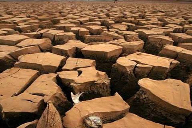 威廉希尔中文网86万亩农作物受旱