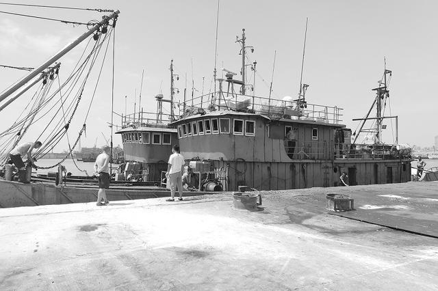 双拖网渔船非法捕捞10万斤小丁鱼