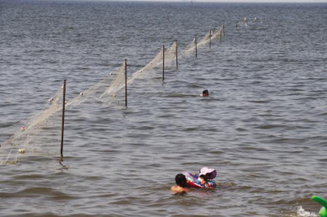 海中架千米防护网防止游客被蜇伤
