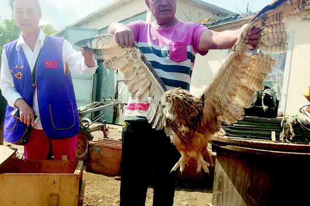 市民捡拾两只受伤鸟皆是国家二级保护动物