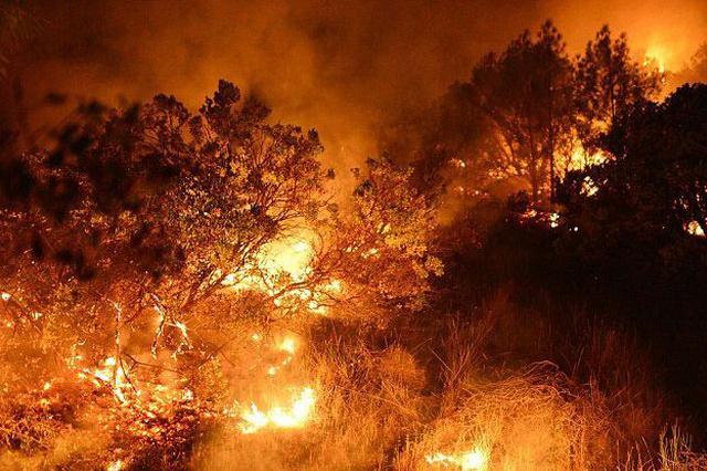 中山区一居民楼突发大火
