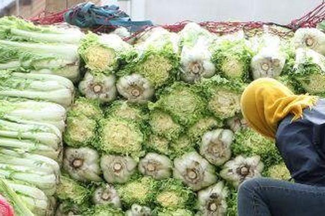 600余秋菜销售点设在市民家门口
