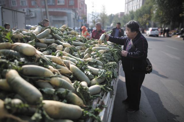 秋菜集中上市白菜萝卜降价
