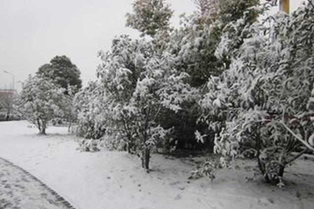 迎战初雪 大连城市除雪指挥部发布除雪动员令