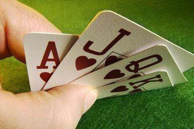 高新园区警方打掉一网络赌博团伙