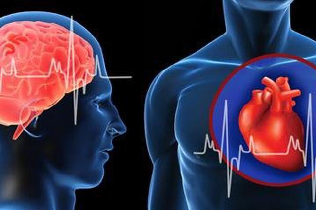 新华保险推出首款特定心脑血管疾病专项保险