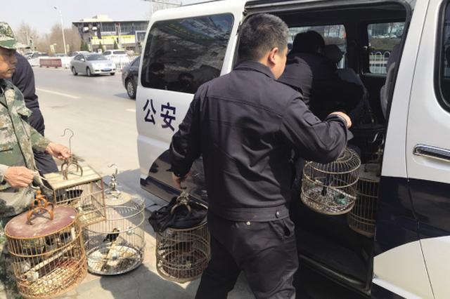 鸟类迁徙高峰到来 花卉店竟养了13只野生鸟