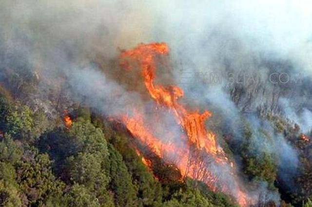 文明祭祀 牢记森林防火安全