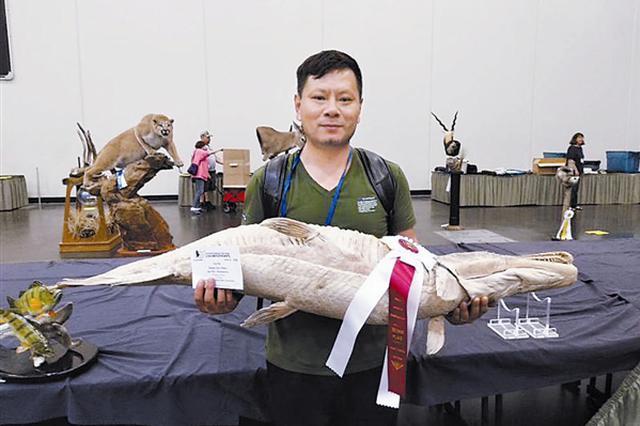 大连金石滩生命奥秘博物馆标本在世界标本大赛中获奖