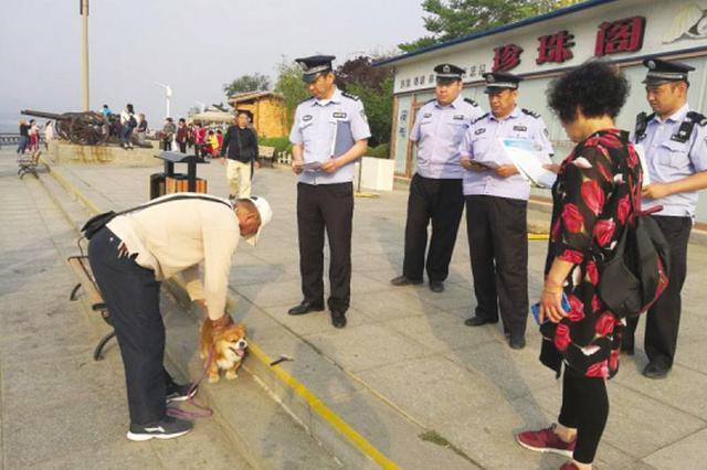 大连开展养犬整治行动 248只禁养犬被强制收容