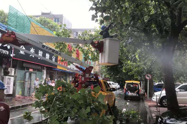 """迎战台风""""利奇马"""" 大连供电公司紧急恢复受损设备"""