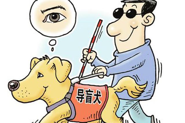大连导盲犬基地成为国际导盲犬联盟成员