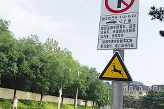 """野生动物活动频繁 滨海路上新""""鹿标"""""""