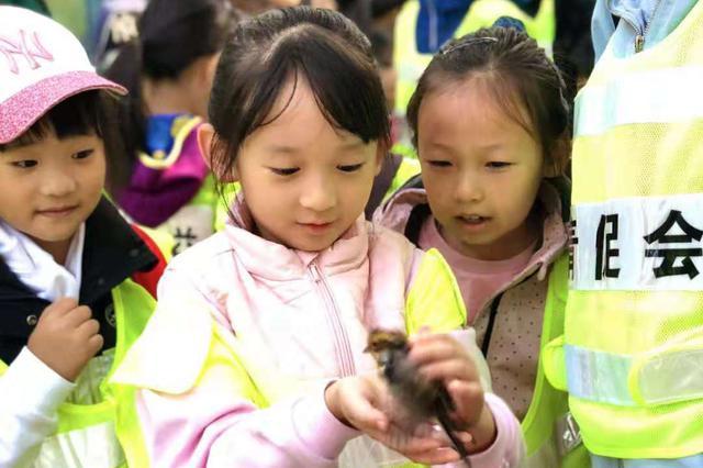 老铁山鸟类环保志愿活动带孩子体验科研之旅