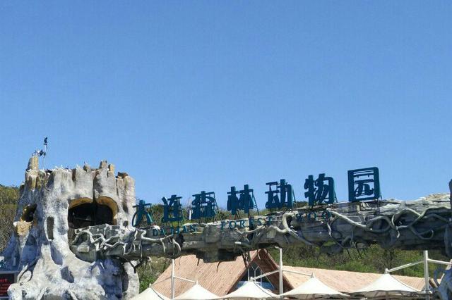 今日起至17日属鼠游客可免费游大连森林动物园