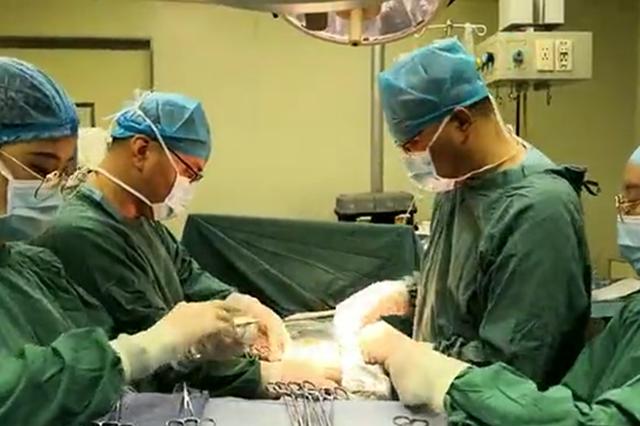 """大连市友谊医院4名患者接受""""生命的馈赠"""" 成功完成肾移植手"""