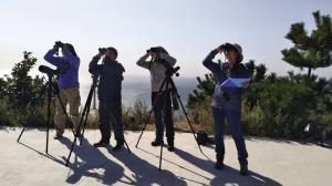 志愿者在老铁山参与猛禽观测