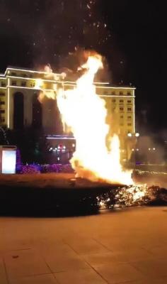 焰火不慎引燃了世纪广场的景观灌木。