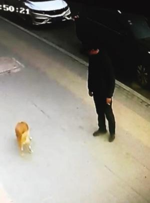 监控中男子扔出一块鸡肝。