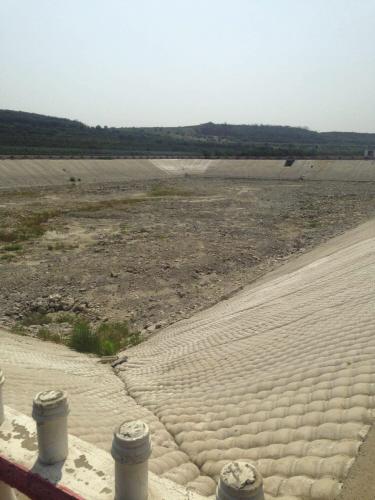 持续高温干旱,方塘干涸甚至长出了荒草。