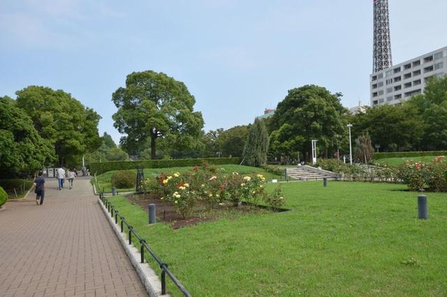 沙区首个法治公园建成投入使用