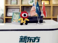 昌平新东方国际学校:走平民化路线的国际学校