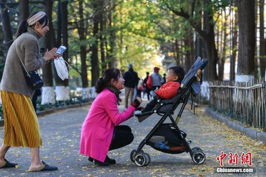市民带孩子出门赏银杏