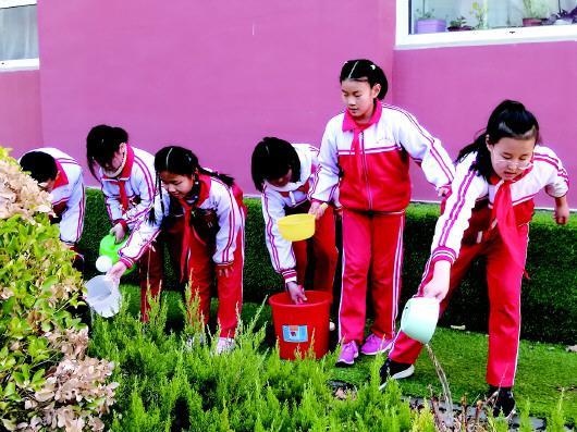 实践活动,爱护花草。