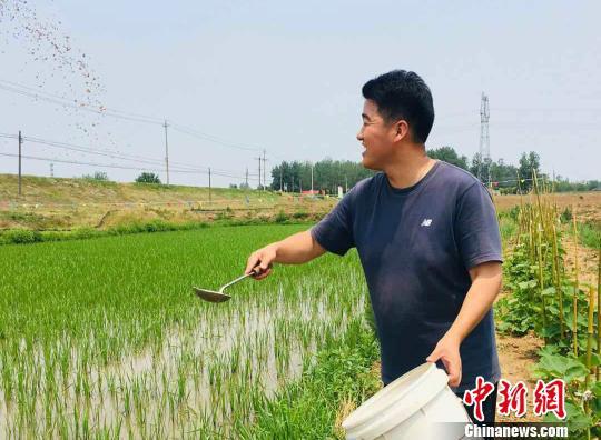图为平东林在田间劳作。 张文清 摄
