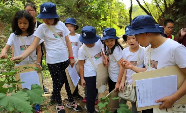 研学旅行受到越来越多中小学生的青睐。 中国网 图