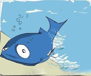 双语阅读:鱼和水的故事