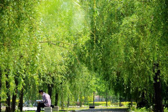 青岛科技大学,明媚春光中读书的学生