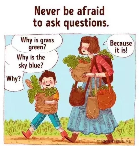 """""""为什么草是绿色的?"""""""